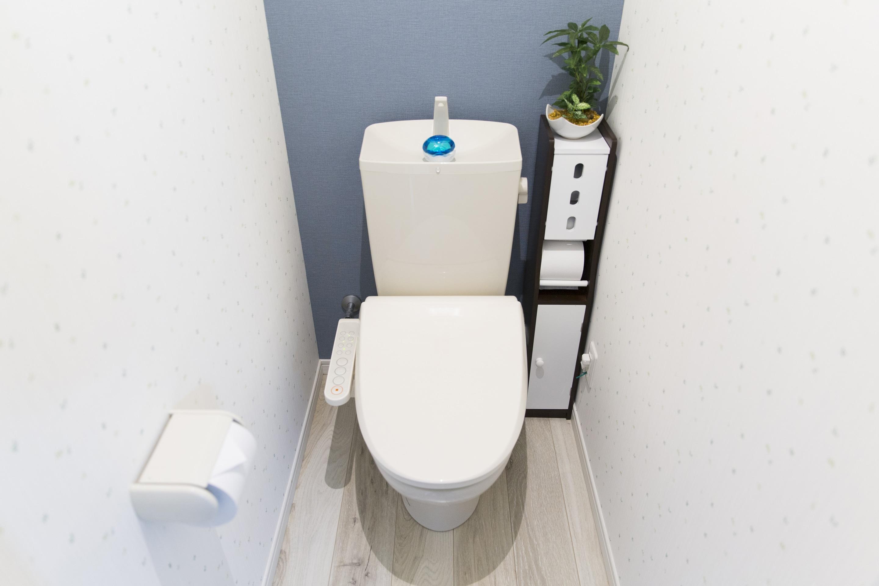 Choisir un carrelage de wc